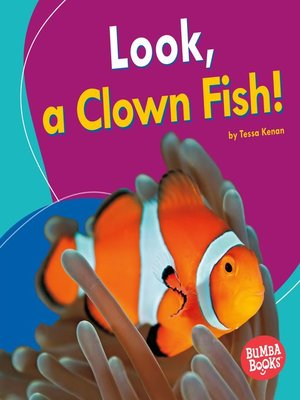 cover image of Look, a Clown Fish!