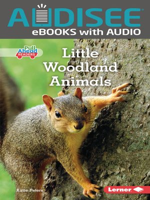 cover image of Little Woodland Animals