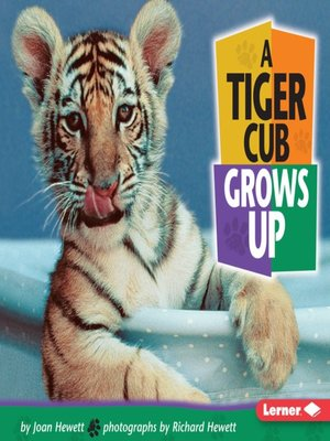 cover image of A Tiger Cub Grows Up