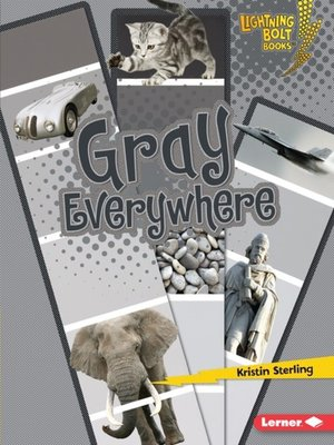 cover image of Gray Everywhere