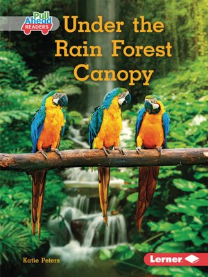 cover image of Under the Rain Forest Canopy