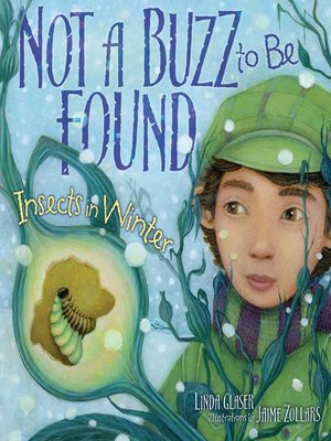 cover image of Not a Buzz to Be Found