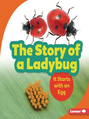 cover image of The Story of a Ladybug