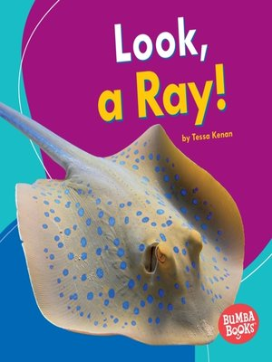 cover image of Look, a Ray!