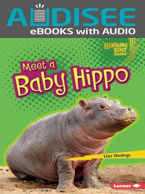 cover image of Meet a Baby Hippo