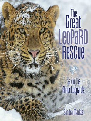 cover image of The Great Leopard Rescue