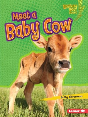 cover image of Meet a Baby Cow