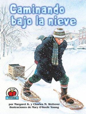 cover image of Caminando bajo la nieve (The Snow Walker)