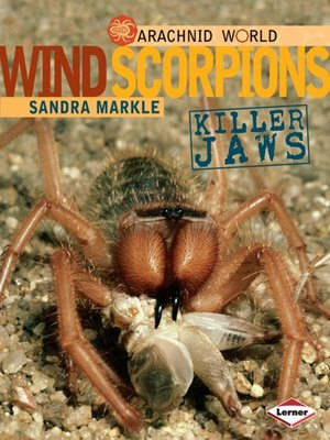 cover image of Wind Scorpions