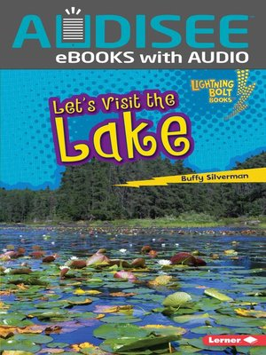 cover image of Let's Visit the Lake