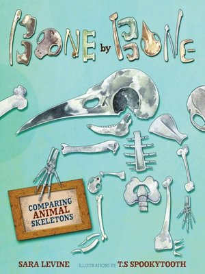 cover image of Bone by Bone
