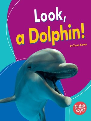 cover image of Look, a Dolphin!