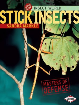 cover image of Stick Insects