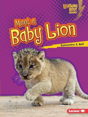 cover image of Meet a Baby Lion