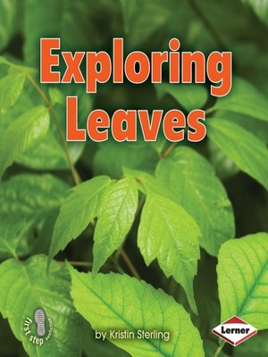 cover image of Exploring Leaves