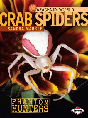 cover image of Crab Spiders
