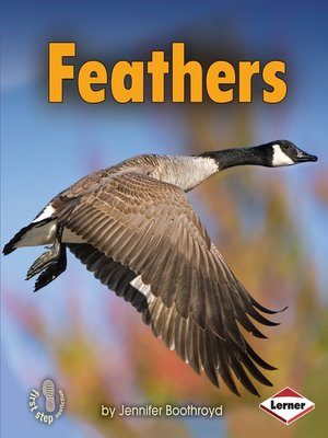 cover image of Feathers