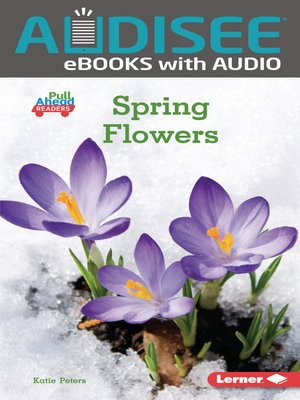 cover image of Spring Flowers