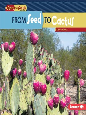 cover image of From Seed to Cactus