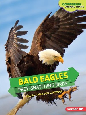 cover image of Bald Eagles