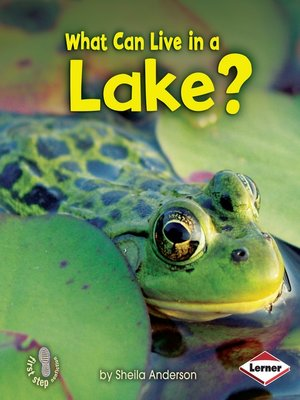 cover image of What Can Live in a Lake?