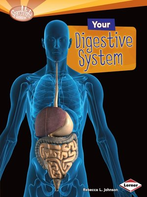cover image of Your Digestive System