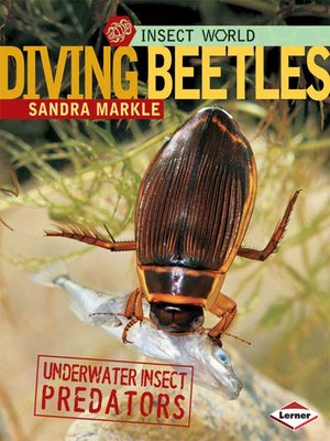 cover image of Diving Beetles