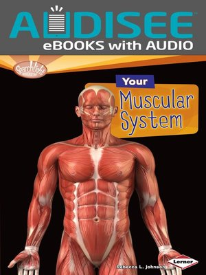cover image of Your Muscular System