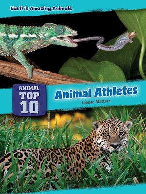 cover image of Animal Athletes
