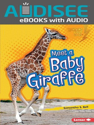 cover image of Meet a Baby Giraffe