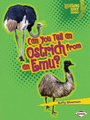 cover image of Can You Tell an Ostrich from an Emu?