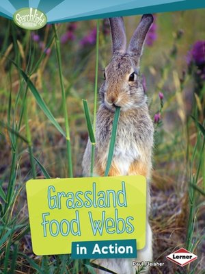 cover image of Grassland Food Webs in Action