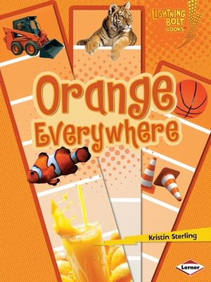 cover image of Orange Everywhere