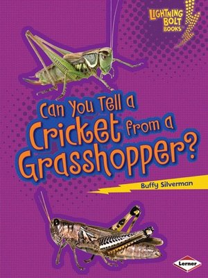 cover image of Can You Tell a Cricket from a Grasshopper?
