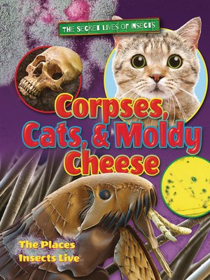 cover image of Corpses, Cats, and Moldy Cheese