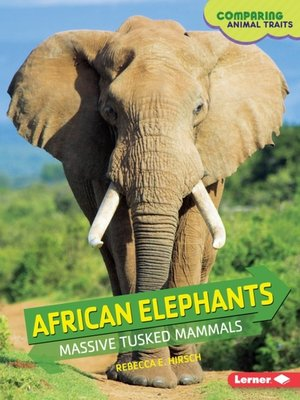 cover image of African Elephants