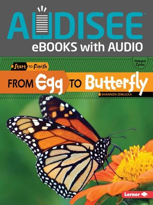 cover image of From Egg to Butterfly