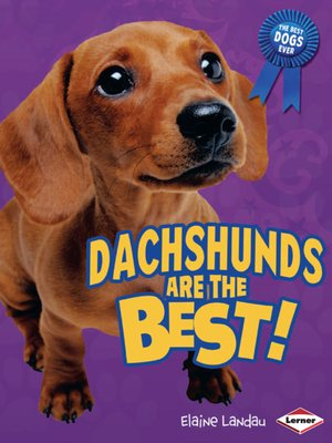 cover image of Dachshunds Are the Best!
