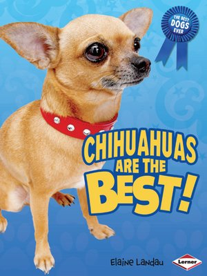 cover image of Chihuahuas Are the Best!