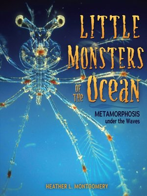 cover image of Little Monsters of the Ocean