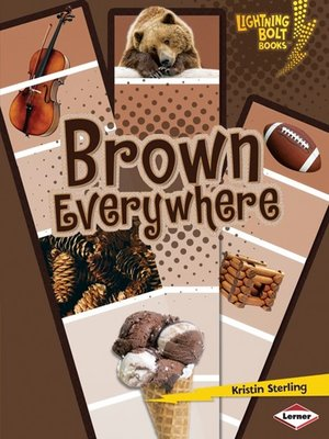 cover image of Brown Everywhere