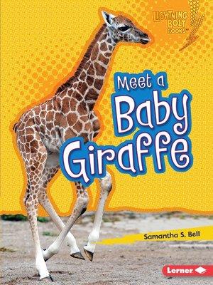 cover image of Meet a Baby Giraffe