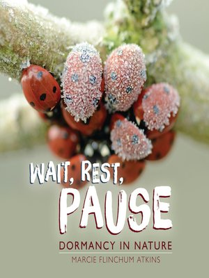 cover image of Wait, Rest, Pause