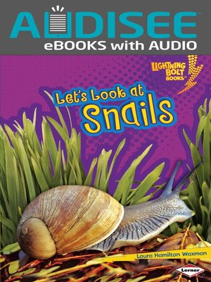 cover image of Let's Look at Snails