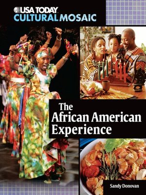 cover image of The African American Experience