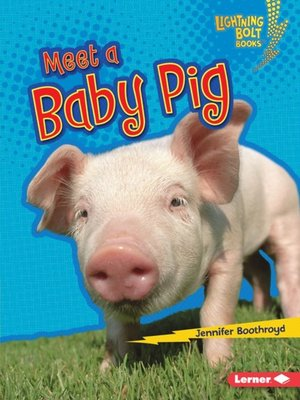 cover image of Meet a Baby Pig