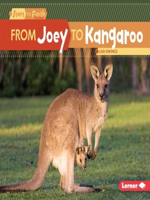 cover image of From Joey to Kangaroo