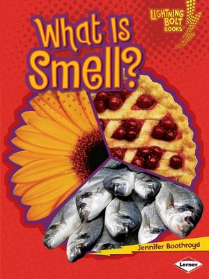 cover image of What Is Smell?