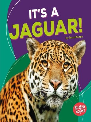 cover image of It's a Jaguar!