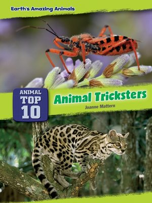 cover image of Animal Tricksters